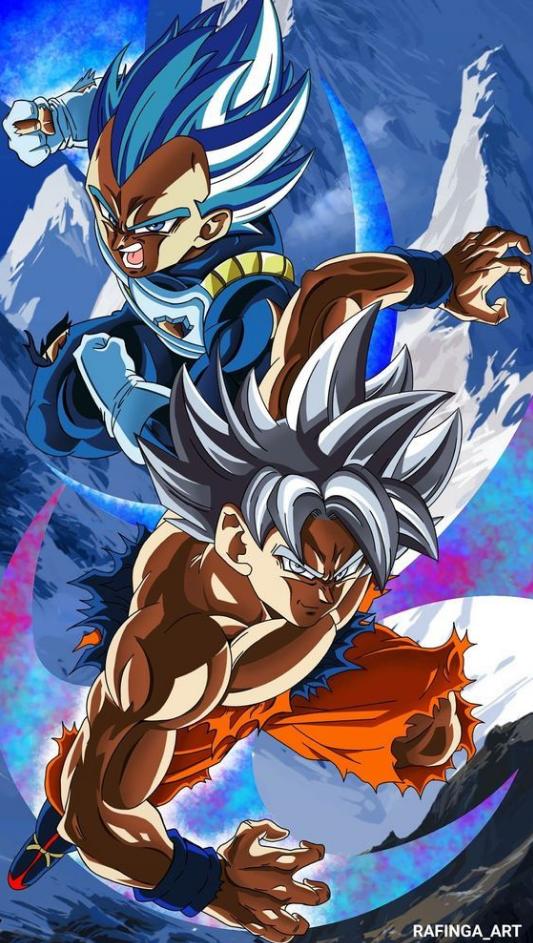 San Goku Ultra Instinct Avec Vegeta Blue
