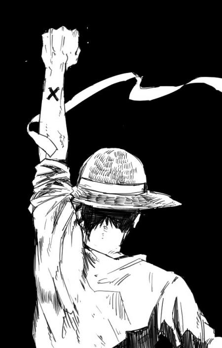 566X887 Photo One Piece Manga en Ultra HD pour Téléphone Gratuit ID : 169940585928767257
